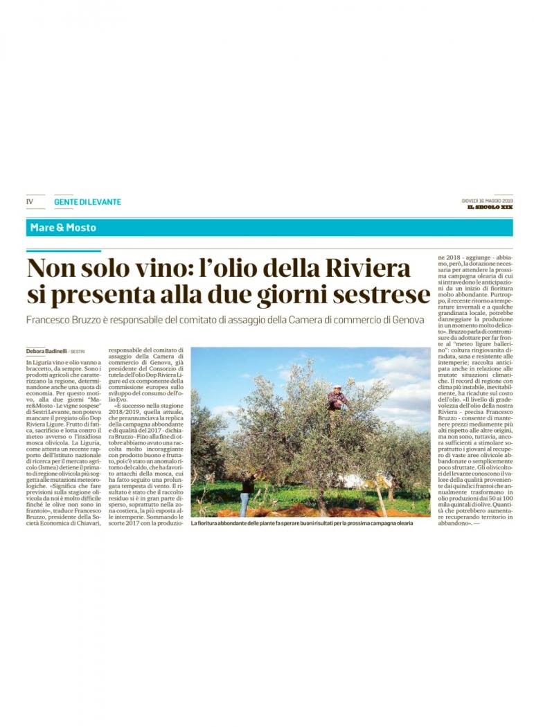 Non solo vino: l'olio della Riviera si presenta alla due giorni sestrese