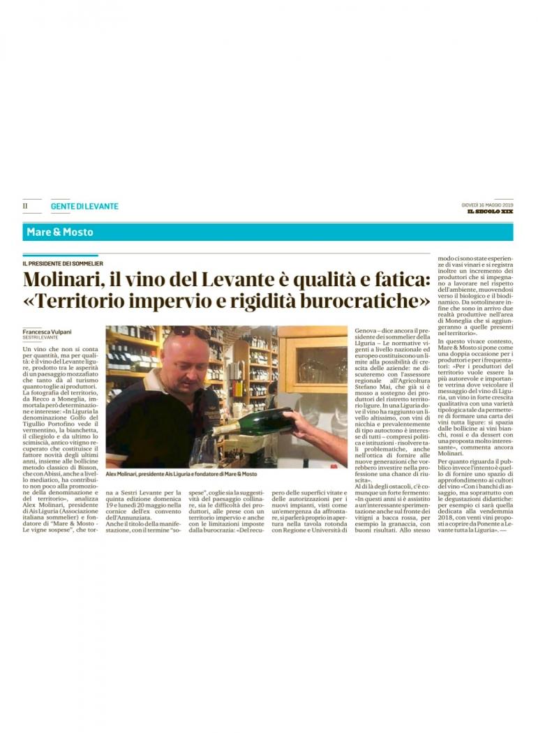 """Molinari, il vino del Levante è qualità e fatica: """"Territorio impervio e rigidità burocratiche"""""""